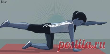 Боли в спине: исчерпывающее руководство по новым методам лечения