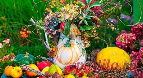 Готовим сад к осеннему сезону / Домоседы