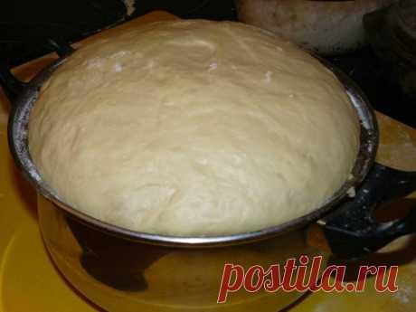 Чтобы тесто быстро подошло, ставлю его в духовку. Рассказываю свой лайфхак | Вкусно и полезно | Яндекс Дзен