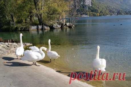 Озеро АНСИ,Франция.