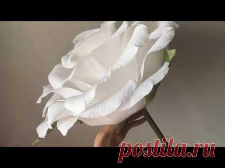 Пошаговый МК.Большая роза из гофрированной бумаги для фотосесии./A big rose out of paper