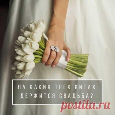 На каких трех китах держится свадьба? weddywood.ru/na-kakih-treh-kitah-derzhitsja-svadba