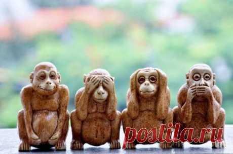Четыре мудрых обезьяны Три мудрых обезьяны олицетворяют в Японии буддистский принцип недеяния зла: «не видеть зла», «не слышать зла», «не говорить о зле», многим хорошо знакомы. Обезьяны Ми-дзару, Кика-дзару и Ива-дзару «прячутся» от зла, закрывая рот, глаза и уши; их изображения часто встречаются, а также копируются и пародируются. Но у них есть и четвёртая подруга, изображение которой встречается гораздо реже. Забытая Сэдзару воплощает принцип «не совершать зла» и прикрывает руками живот или о