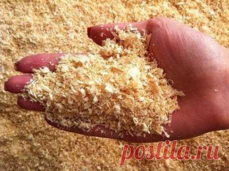 SAWDUST FOR THE BIG HARVEST