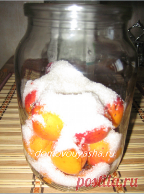 Домашняя настойка абрикосовая. Проверенный временем рецепт   Народные знания от Кравченко Анатолия