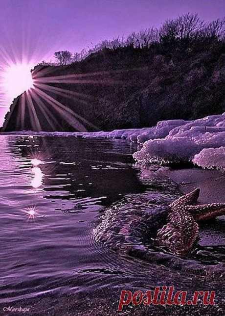 Пин от пользователя Марина Казакова на доске Вдохновение цветом - ФИОЛЕТОВЫЙ Фиолетовый и Вдохновение в Яндекс.Коллекциях