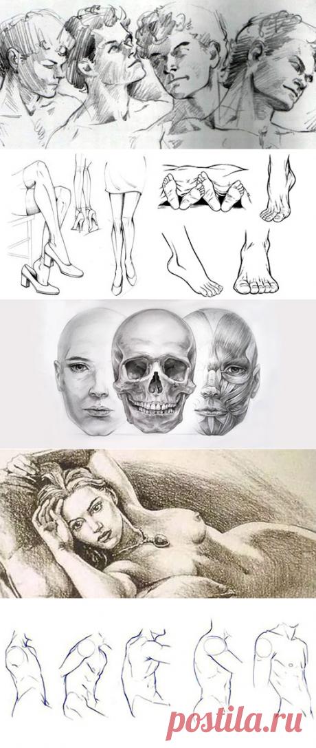 Как Нарисовать Человека | web-paint.ru
