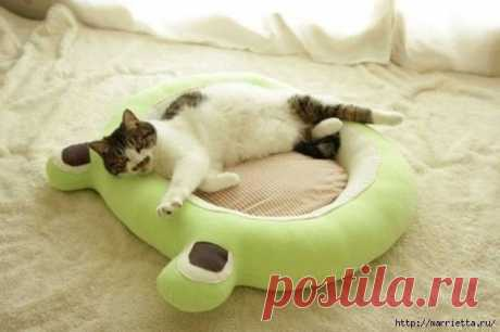 How to sew a bed for a cat