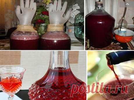 Домашнее вино из старого никому не нужного варенья: пошаговый рецепт приготовления Попробуйте - это вкусно!