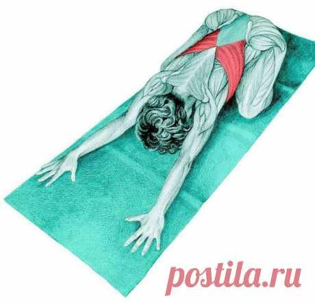 Как простым способом можно решить проблему болей в спине
