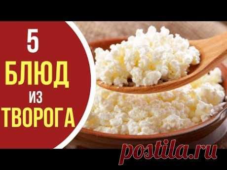 Как приготовить творог: 5 блюд из ТВОРОГА на все случаи жизни