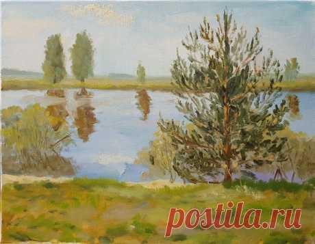 Сосенка на берегу - Официальный сайт художника Игоря Ясакова