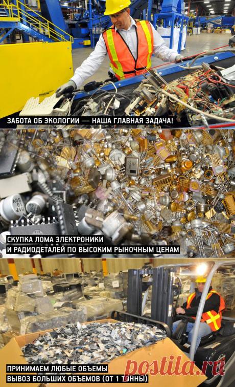 Скупка радиодеталей. Купим радиодетали, платы, электронные компоненты, транзисторы, реле - Скупка радиодеталей DETALTORG