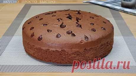 Шоколадный бисквит с кусочками шоколада. Потрясающе вкусный бисквит | Вкусно Просто Быстро | Яндекс Дзен