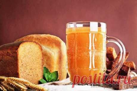 El kvas de casa - la receta Simple y sabrosa