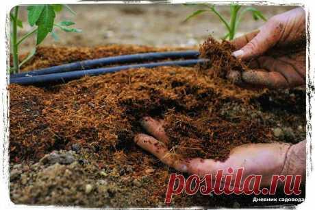 Как сделать почву рыхлой и мягкой как пух - мои старые методы из 90-x | Дневник садовода | Яндекс Дзен