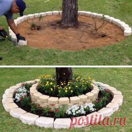 Достойное обрамление для садовых деревьев.