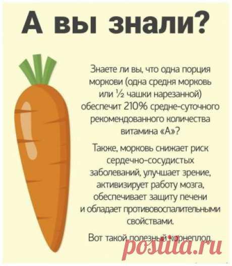 О пользе моркови. Удивительный корнеплод