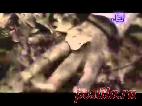 """документальный цикл """"Нечисть"""". Русалки. от 25.10.2012 - YouTube"""