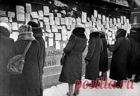 Чем приходилось питаться людям в блокадном Ленинграде? | Pravdoiskatel