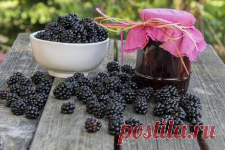 Как приготовить вкусный джем из ежевики: простые рецепты ежевичного джема