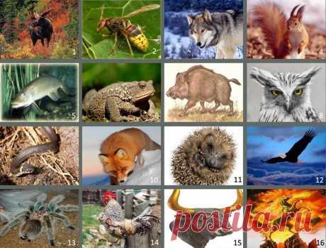 Славянский гороскоп тотемных животных по годам