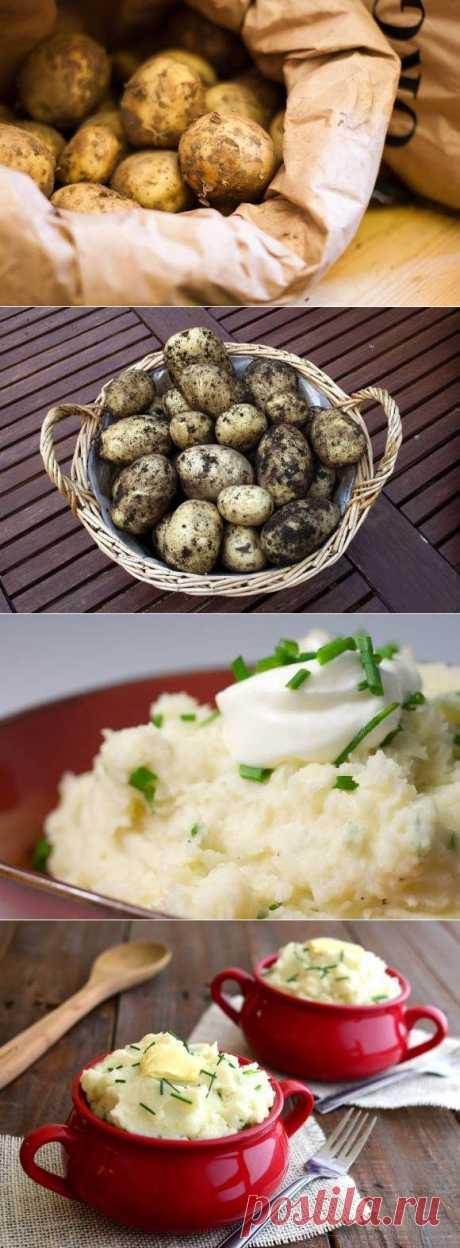 6 лучших картофельных гарниров