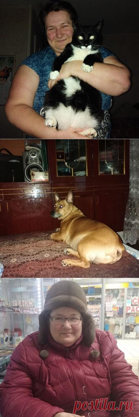 larisa (@lariska71kiska) • Фото и видео в Instagram