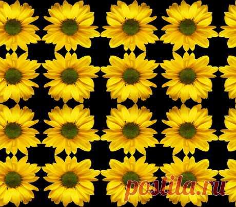Узор с подсолнухами - Seamless Pattern With Flowers  Free Stock Photo HD - Public Domain Pictures