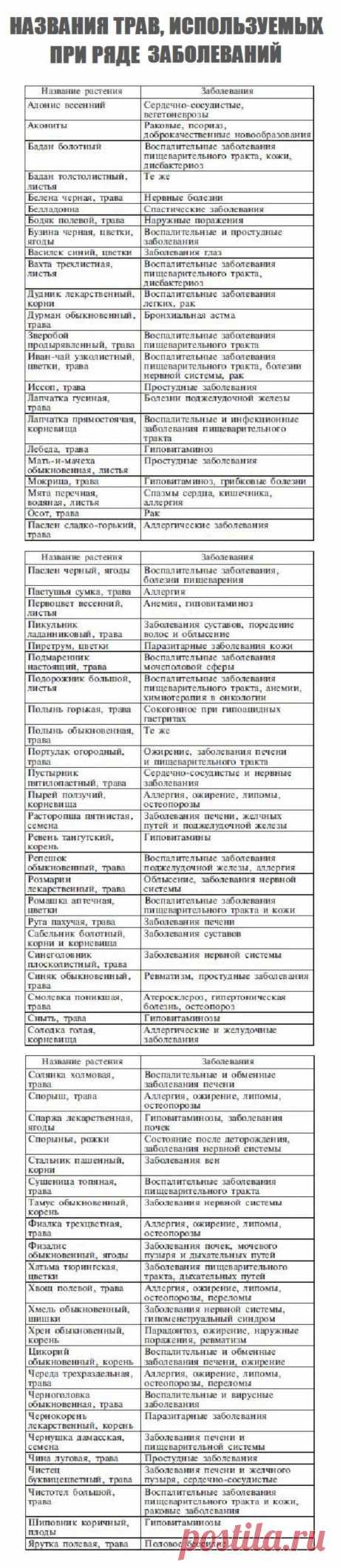 Названия трав, используемых при ряде заболеваний. «Уникальные лечебные свойства сорняков»  Корсун В.Ф., Викторов В.К