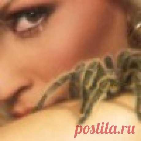 Natalia L