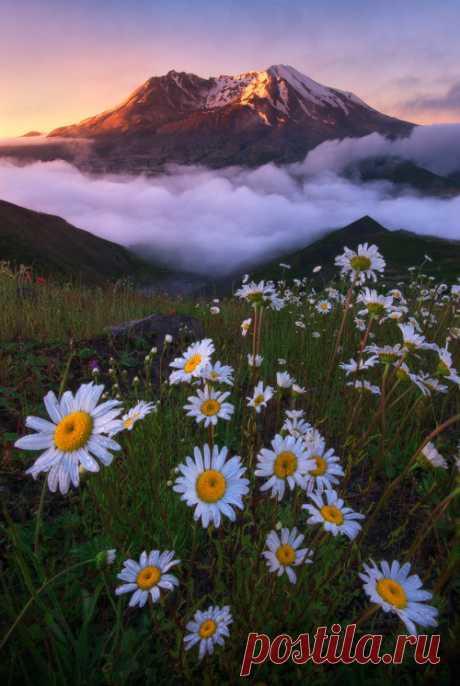 miscommunicati0n:   enchanting-landscapes:  Helens by Justin Poe.     Nature blog