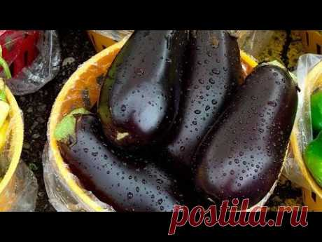 How to freeze eggplants for the winter.