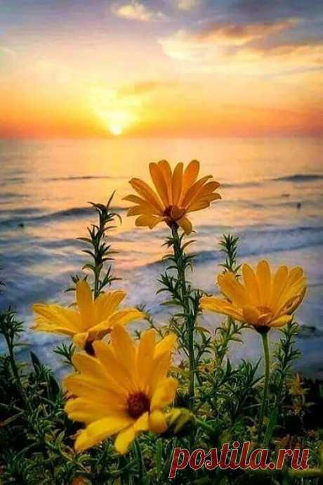 ღ✿ღ В жизни так много поводов сказать:              - Слава Богу!... ღ✿ღ