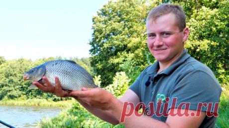 ⭕Ужасные ошибки рыболовов, ловя на фидер👇 | 🐟 РЫБА4ОК | Яндекс Дзен
