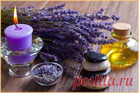 Сила ароматерапии: 5 основных масел, которые вы должны использовать