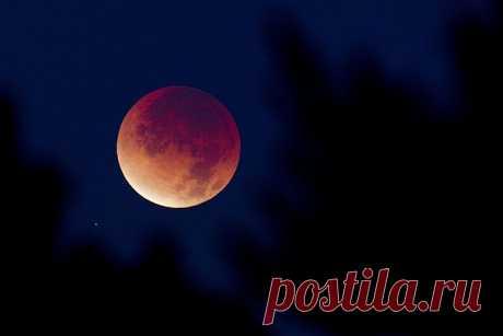 Павел Глоба: «Последствия этого лунного затмения могут продлиться 18 лет» Вечером 27 июля мы увидим полное затмение Луны. Оно будет самым долгим в XXI веке. Небесное шоу продлится почти 4 часа. А полная фаза составит 1 час 43 минуты (это с 22:30 до 00:13 по московскому врем…