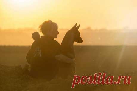 Los amigos íntimos: la Amistad del perro ganadero y sov±nka. |Фотограф de Alemania Tanya Brandt.