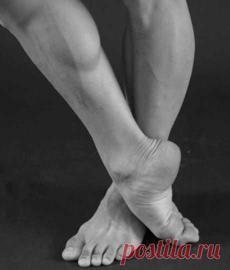 Гель «Пантогор» для суставов: отзывы, инструкция по  «Пантогор» для суставов – гель с натуральным составом, который запускает процессы восстановления костной и хрящевой ткани. Он обладает широким спектром действия и имеет минимальное количество
