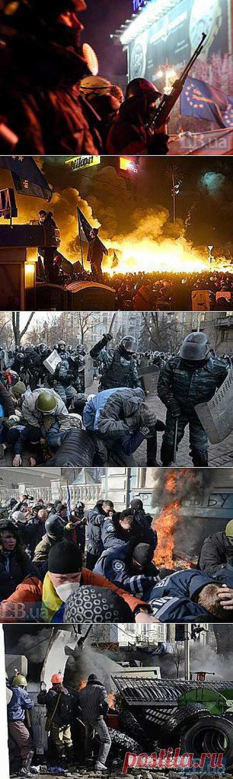 Число погибших активистов возросло до 20 - Количество раненных активистов – 500 человек. - LB.ua