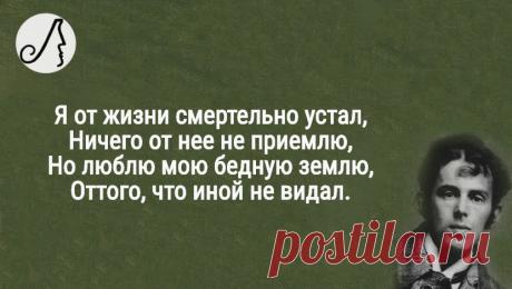 """""""Я от жизни смертельно устал"""" стихи Мандельштама о вечном   Личности   Яндекс Дзен"""