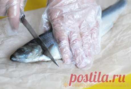 Как почистить селедку быстро и без костей Очистка селедки – одна из самых неприятных процедур на кухне. Возни по извлечению многочисленных костей из этой рыбы много, а еще пропитает всю кухню, доску разделочную и руки рыбным запахом. Но есть технология, которая поможет очистить селедочку быстро и без костей.Пошаговый план действий по