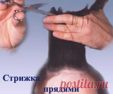 Стрижка для объема волос при помощи градуирования - Методы стрижки - Стрижки - Каталог статей - Стрижки и прически своими руками