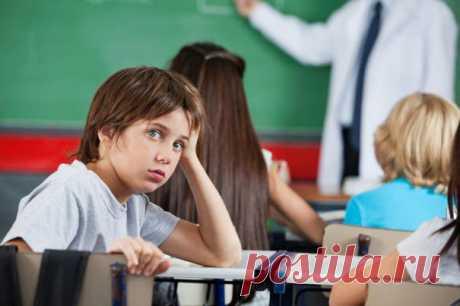 Почему наши дети не должны учиться на отлично | ЖИВОЙ, ЕЩЕ ЖИВЕЕ