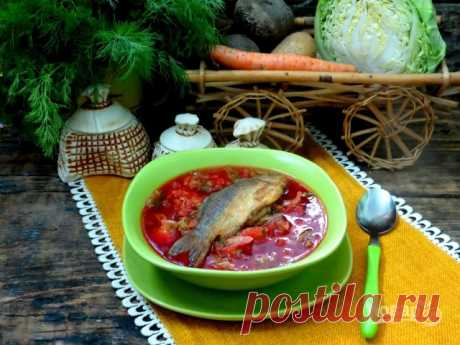 186 recipes of soups with fish on Повар.ру