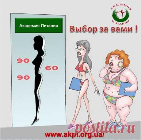 Внимание!!! Онлайн Академия Питания для желающих похудеть без изнуряющих диет и голодовок. Начался набор в новую Группу!  Не упустите свой шанс привести фигуру в порядок  и выглядеть самой красивой и стройной!!! Приглашаю всех на ознакомительное занятие   https://4.ak-pitaniya.com/