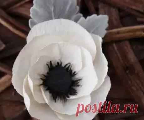 Las flores del papel ondulado por las manos: el maestro la clase por los artículos de gofrobumagi