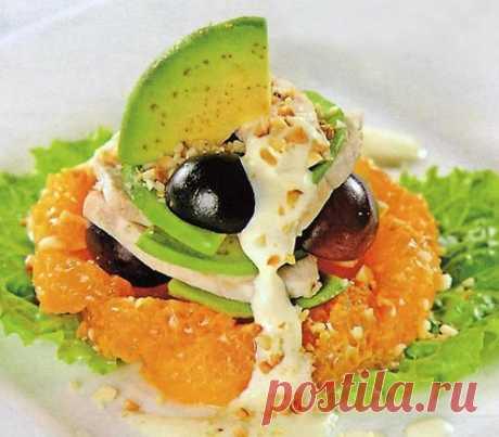 Avocado salads - TalkyLand