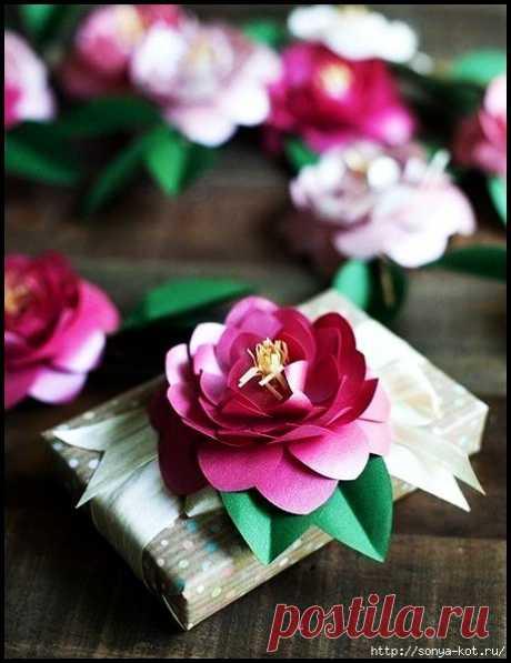 Запись на стене [club23715713 Камелия из бумаги]#цветы_из_бумаги@handmade_blog