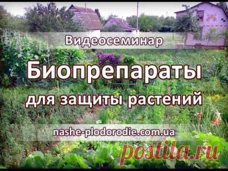 Биопрепараты для защиты растений - полная версия